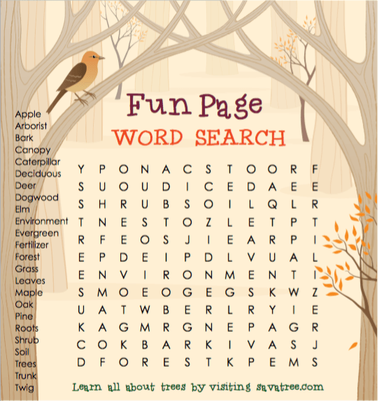 Word Search for Children