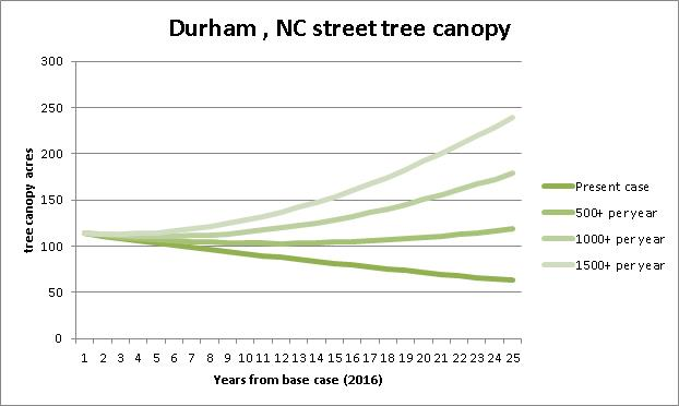 Durham Canopy increase over time